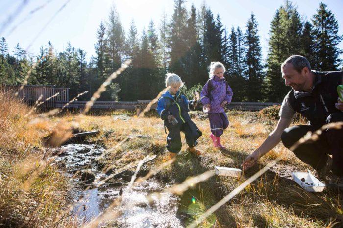 Kinder-im-Piller-Moor