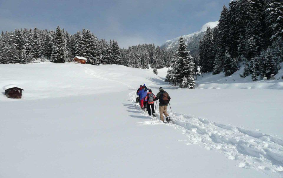 Schneeschuhwandern-im-Naturpark
