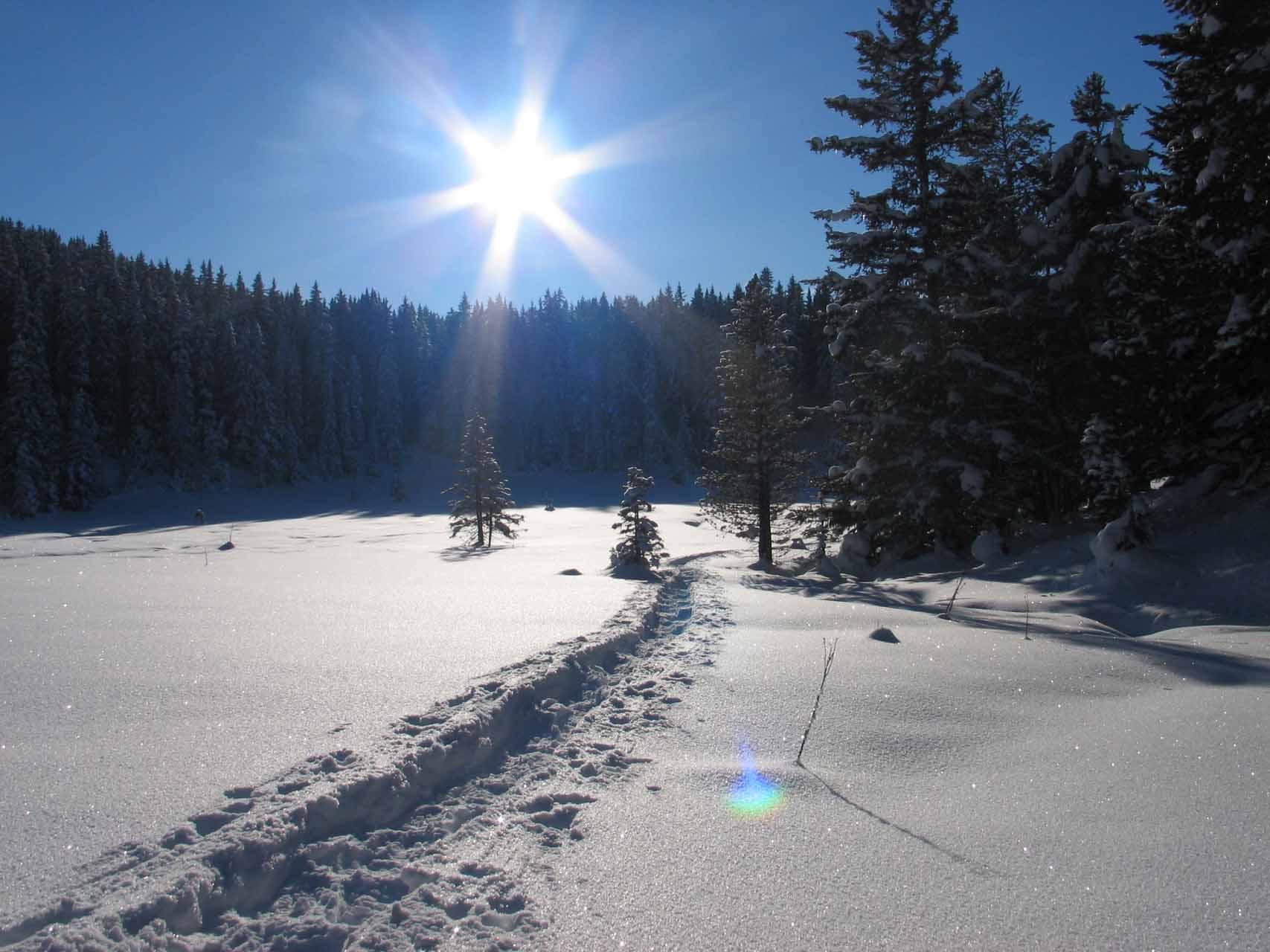 Winter im Naturpark