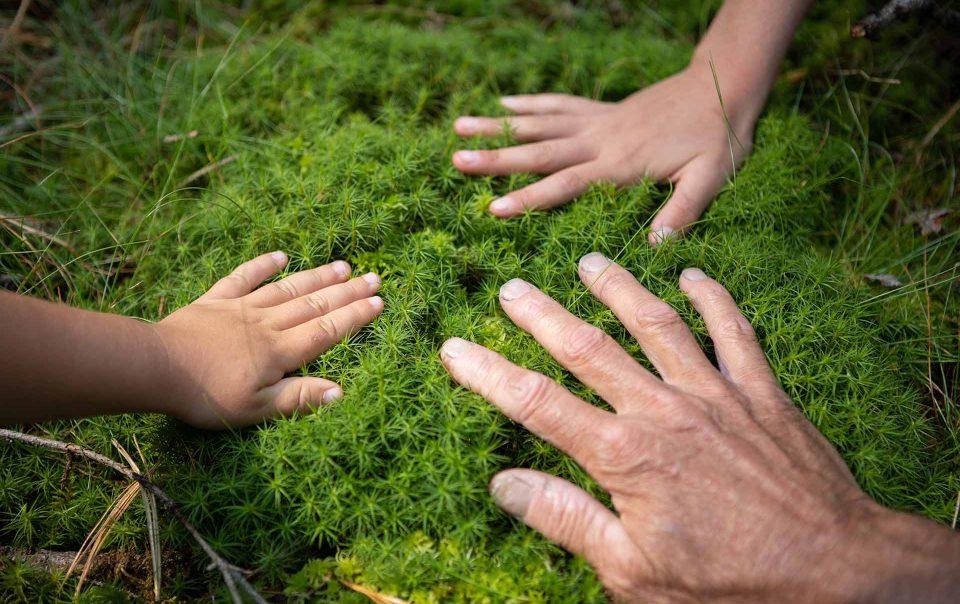 Waldbaden Hände auf Moos