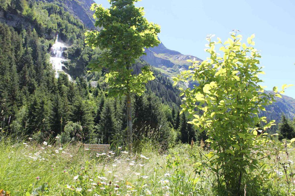 Garten mit Wasserfallblick